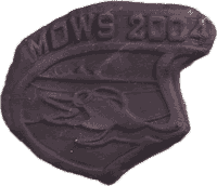2004 Finisher Medal
