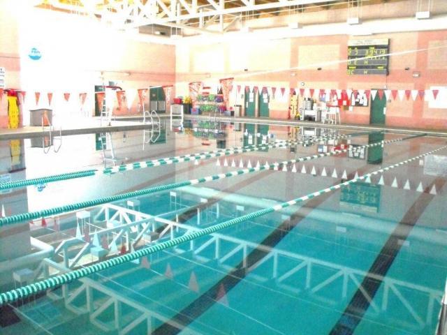 Pools In Gainesville Ga Zef Jam