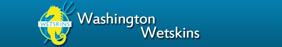 Washington Wetskins Banner