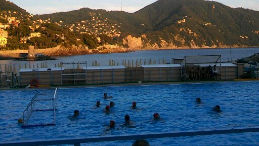 Newport beach water polo home for Newport swimming pool schedule