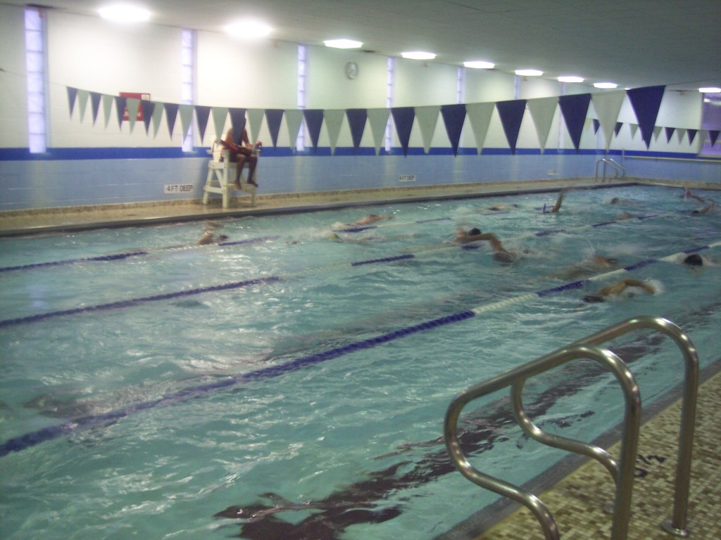Gray Sharks Leaning Tower Ymca 39 S East Pool