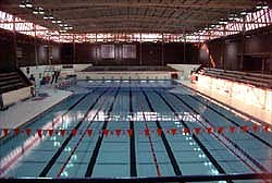 Chicago Blue Dolphins University Of Illinois Peb Large Pool